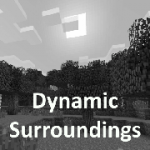 Dynamic Surroundings